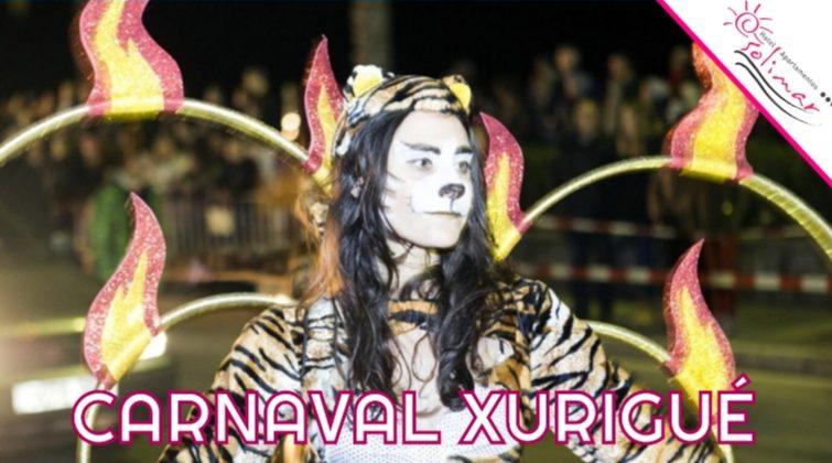 Lee más sobre el artículo Carnaval de Calafell