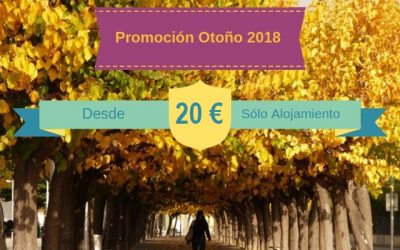 Promoción Otoño 2018: ¡Desde 20 Euros!